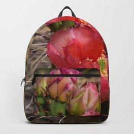 Cacti in Bloom - 4 Backpack