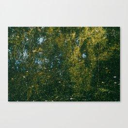 Holme Woods 3 Canvas Print
