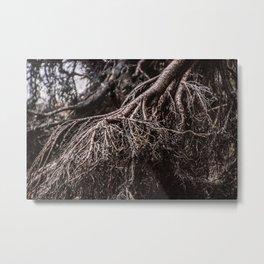 La Forêt Morte Metal Print