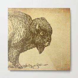 Bison 1 Metal Print