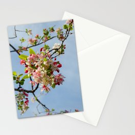 Spring in the Air Stationery Cards