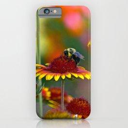Bee on Gaillardia iPhone Case