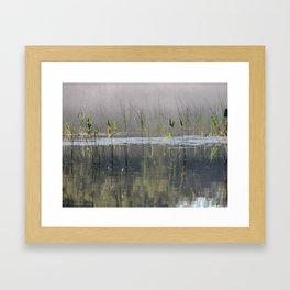 Brighten Framed Art Print