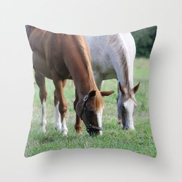 Brown and White Horse in Field Throw Pillow