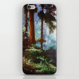 The Forrest Through the Trees iPhone Skin