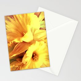 Daffodils In Spring Stationery Cards