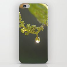 A Magical Moment iPhone & iPod Skin