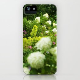Limelight Hydrangeas in My Rubio Garden iPhone Case