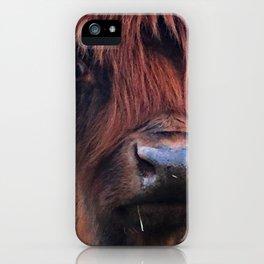 Scottish Highland Cow - Maxine iPhone Case
