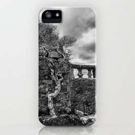 Old Tree in Cill Chriosd Churchyard iPhone Case