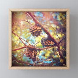 Autumn pine cones  #photography Framed Mini Art Print