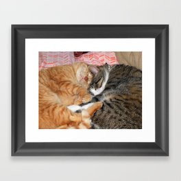 Nap Buddies Framed Art Print