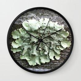 single lichen Wall Clock