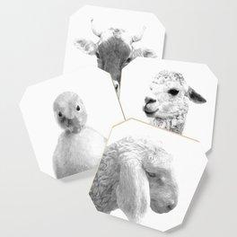 Black and White Sheep Coaster