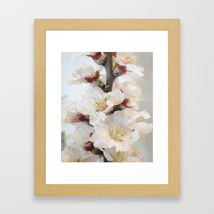 Spring blossoms vintage II Framed Art Print