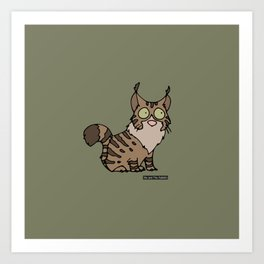 Cat - Maine coon Art Print