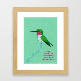 Ruby throated hummingbird Framed Art Print