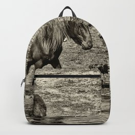 Horses taking a bath and relaxing Backpack