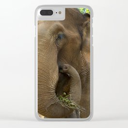 Elephants of Chiang Mai Clear iPhone Case