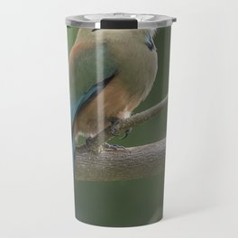 Turquoise-browed motmot perched in Costa Rican rainforest tree. Travel Mug