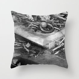 old grave Throw Pillow