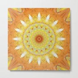 Mandala find your way Metal Print
