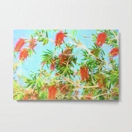 Tropical Bottle Brush Flowers In Florida Metal Print