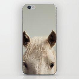 Peekaboo iPhone Skin