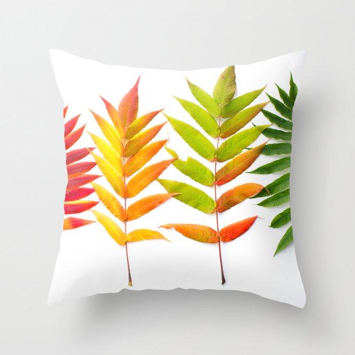Rainbow Sumac for Autumn in Canada Throw Pillow