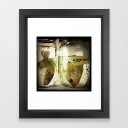 Green Sunfish Framed Art Print