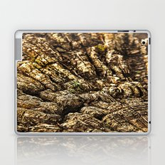 wood 2 Laptop & iPad Skin
