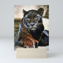 The Black Leopard Mini Art Print