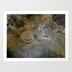 San Gabriels Mountain Lion Art Print