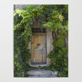 Provence Door covered with green vines Poster