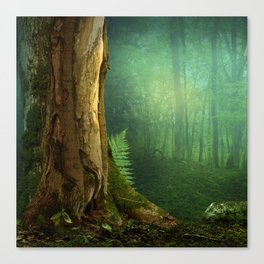 Tree and fern Canvas Print