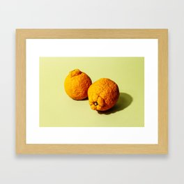 Satsuma Framed Art Print