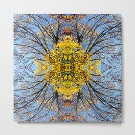 Abstract Fall Mandala 1670 Metal Print