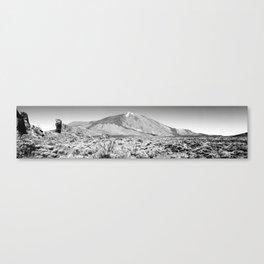 PNdT panoramic (B&W) Canvas Print