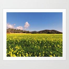 yellow flower meadow Art Print