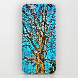 Majestic Hardwood iPhone Skin
