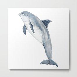 Bottlenose dolphin Metal Print