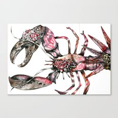 Aphrodisy  lobster Canvas Print