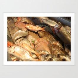 Variety of Fresh Fish Seafood on Ice Art Print
