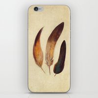 feathers iPhone & iPod Skins featuring Three Feathers  by Terry Fan