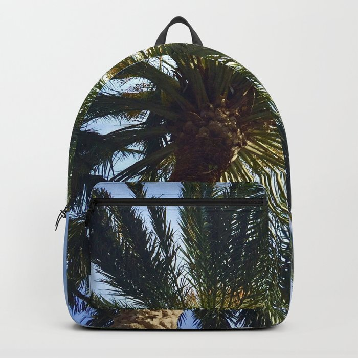 The Wonder of the Palm Tree Above Backpack