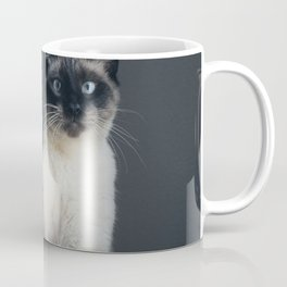 Satisfaction Brought It Back Coffee Mug