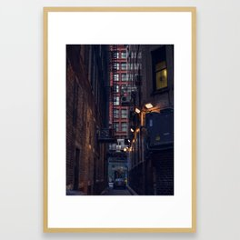 Alley Cat Framed Art Print