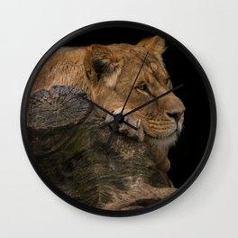Resting Lioness Wall Clock