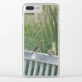 All in a Row Clear iPhone Case