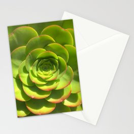Succulent Nature's Geometry Stationery Cards